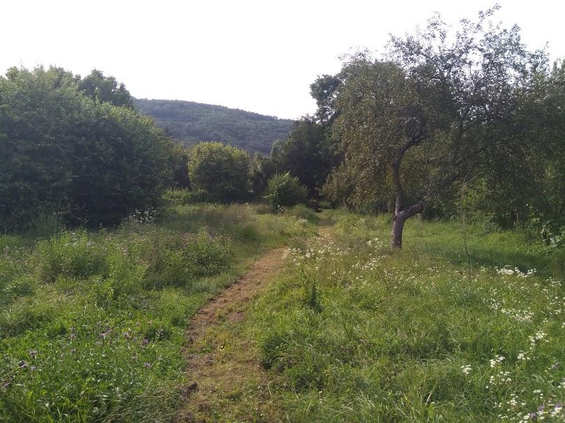 Wandelen in eigen achtertuin Hongaarse boerderij buitenleven in Hongarije Kovácsszénája