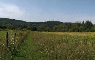 Panoramafoto achtertuin van buitenleven in Hongarije buitenkeuken in Kovácsszénája.