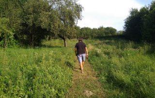 Wandelen in eigen achtertuin Hongaarse boerderij buitenleven in Hongarije Kovácsszénája Hongarije