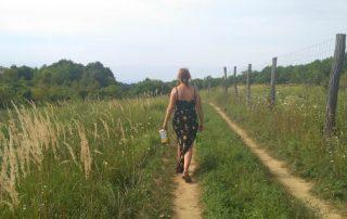 Wandelpad naar waterrecreatiegebied Orfű, op loopafstand van woningen in Kovácsszénája.