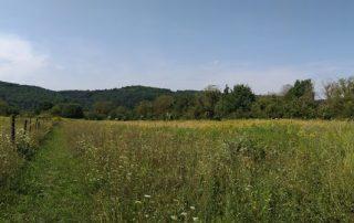 Panoramafoto achtertuin van buitenleven in Hongarije in Kovácsszénája.